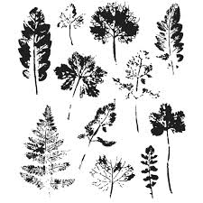 sters anonymous tim holtz leaf prints st set