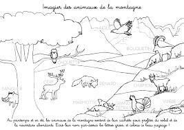 Coloriage à imprimer  Imagier des animaux de la montagne