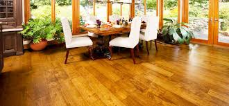 tips how to care and maintenance hardwood floors roy home design