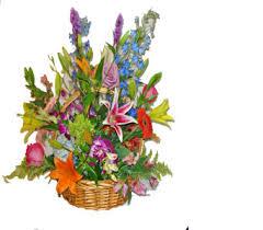 florist naples fl naples florists flowers in naples fl gene s 5th ave florist