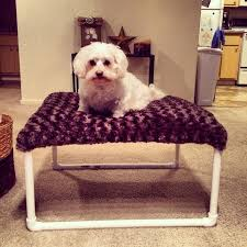 diy elevated dog bed pvc with canopy diy elevated dog bed pvc