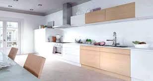portes cuisine ikea peinture porte cuisine castorama peindre meuble de cuisine ikea