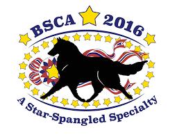 belgian sheepdog rescue texas events belgian sheepdog club of america