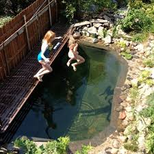 Backyard Swimming Ponds by 22 Best Swimming Pond Images On Pinterest Natural Pools