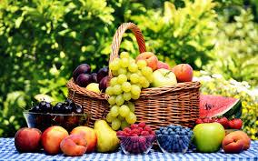 organic fruit basket biokutatás biokutatás közhasznú nonprofit kft