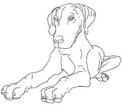 animal printable realistic dog coloring pages coloring tone