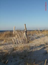 where i spend my summers sandy neck beach cape cod places