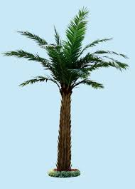 the large leaves small trees artificial mini palm trees view