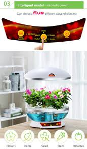 diy organic fresh vegetable mini indoor plant factory direct buy