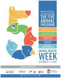 cvma animal health week