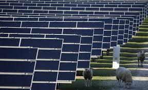 resume template for customer service associate ii slap ii the trump administration slaps 30 tariff on imported solar panels