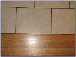 Trafficmaster Transition Strip by Tile To Carpet Transition Strip On Concrete Carpet Vidalondon
