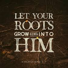 col 2 6 7 as you therefore received jesus the lord so