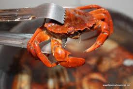 cuisiner le crabe comment cuire le crabe facile