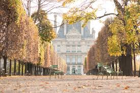 paris photography autumn light in the tulleries paris france