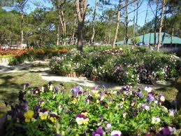 Flower Garden Hanoi by Valley Of Love Vietnam Honeymoon Destination Hanoi Tours