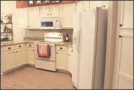 White Kitchen Cabinets Kitchen Endearing Yesterday I Unveiled To You My Painted Kitchen