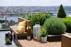 roof garden plants the rise of the rooftop garden adding value to venues