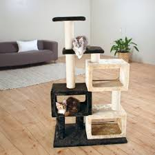 29 best home decor for cats images on pinterest cats animals