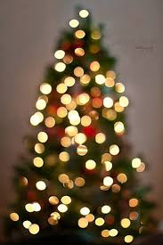 how to light a christmas tree to successfully photograph your christmas tree