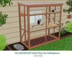 best 25 cat enclosure ideas on pinterest outdoor cat enclosure