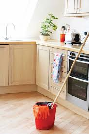 Clean Kitchen Pure And Simple Clean Naturally With Plant Essential Oils