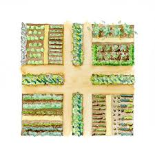 Florida Vegetable Gardening Guide by Planning The Vegetable Garden One Green Generation Vegetable