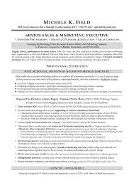 Sales And Marketing Resume Sample by Regional Vp Sales Sample Resume Executive Resume Writing Sales