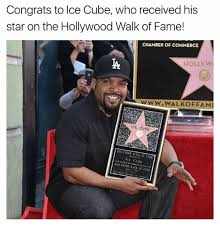 Ice Cube Meme - 25 best memes about ice cubes ice cubes memes