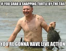 You Re The Man Meme - if you grab a snapping turtle by the tail you re gonna have live