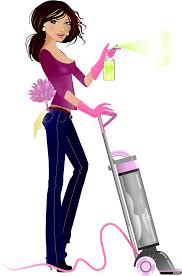 house cleaning services orland park il orland park maids