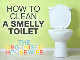 how to deep clean cleaning a smelly toilet the organised housewife