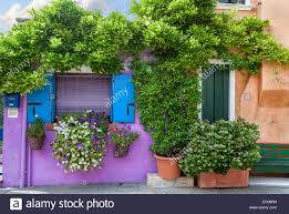 color house with flowers on burano island near venice italy