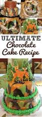 how to bake the perfect high altitude chocolate cake