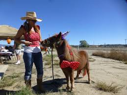 equestrian halloween costume lake riverside estates halloween play day a success anza valley