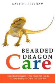 bearded dragon lighting guide bearded dragon care sheet exotic pets resources