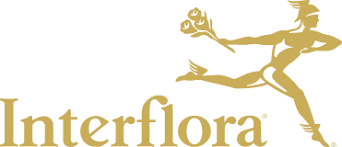 Flower Companies Interflora Flowers Same Day Flower Delivery