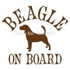 discount beagle 2017 beagle on sale at dhgate