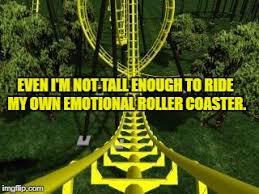 Roller Coaster Meme - roller coaster imgflip