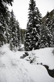 south cottonwood creek trail bozeman mt bri sul