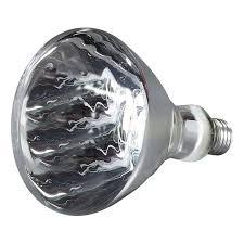250 watt light bulb carlisle hlrp602 heat l bulb 250 watt white