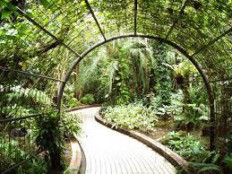 Indoor Garden Design by Attractive Indoor Garden Design For Perfect Home 2953