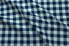 buffalo plaid checks navy and mint check fabric pattern plaid