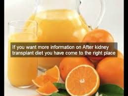 healthy after kidney transplant diet repairs kidney disease