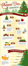 190 best urban forestry work images on pinterest infographics