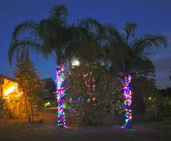 christmas light palm tree christmas lights decoration