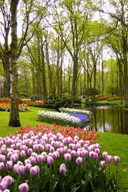 3871 best beautiful gardens and landscapes images on pinterest