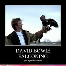 David Bowie Meme - david bowie meme photo funny celebrity pictures david bowie