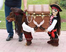 small dog witch costume best homemade dog pirate costume dog pirate costume homemade