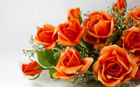 how to send flowers to someone send flowers to someone best flower 2017